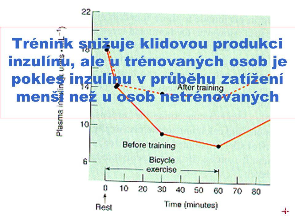 Trénink snižuje klidovou produkci inzulínu, ale u trénovaných osob je pokles inzulínu v průběhu zatížení menší než u osob netrénovaných