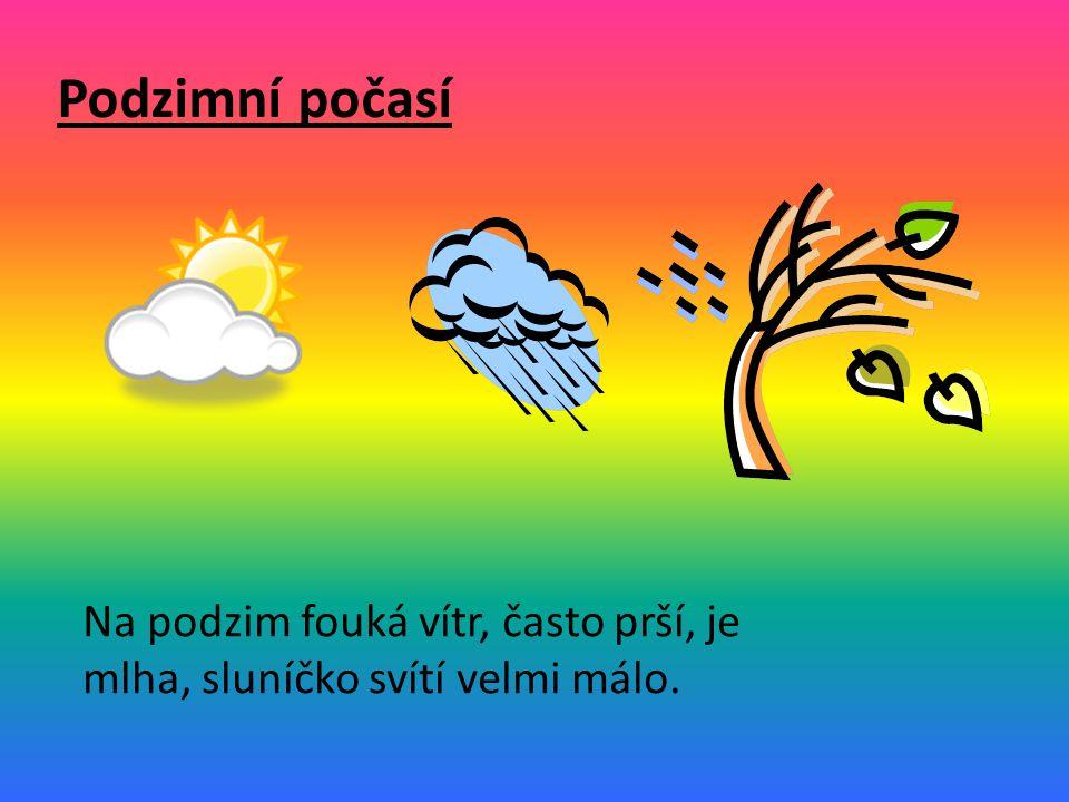 Podzimní počasí Na podzim fouká vítr, často prší, je mlha, sluníčko svítí velmi málo.