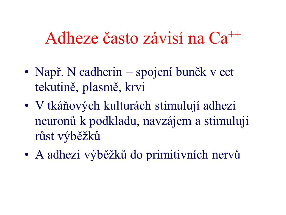 Adheze často závisí na Ca++