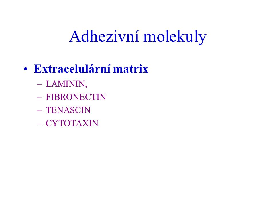Adhezivní molekuly Extracelulární matrix LAMININ, FIBRONECTIN TENASCIN
