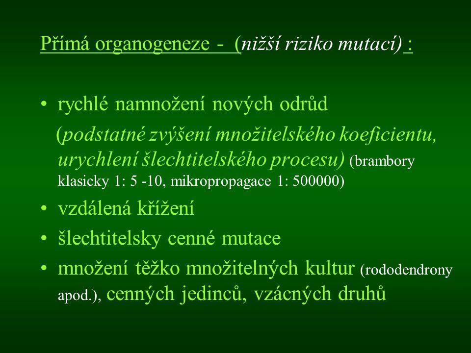 Přímá organogeneze - (nižší riziko mutací) :