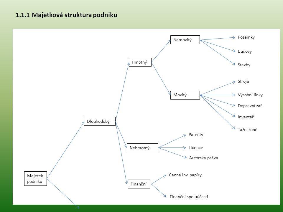 1.1.1 Majetková struktura podniku