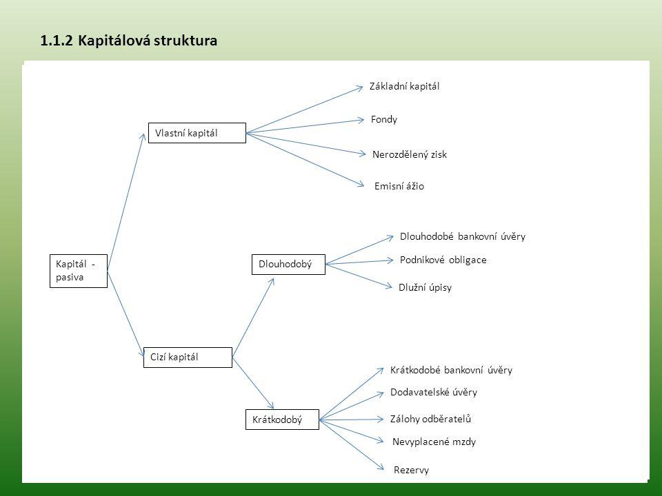 1.1.2 Kapitálová struktura Základní kapitál Fondy Vlastní kapitál