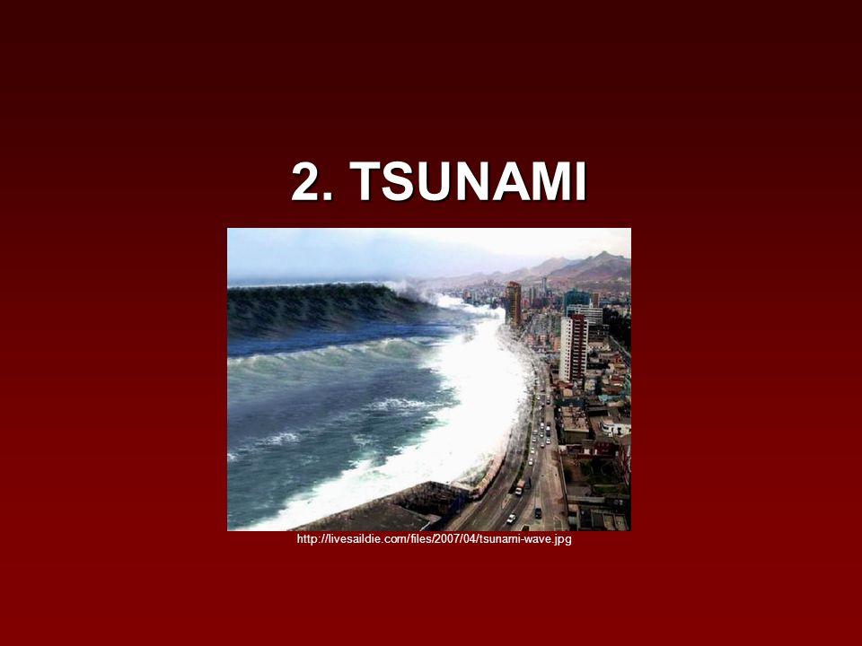 2. TSUNAMI http://livesaildie.com/files/2007/04/tsunami-wave.jpg