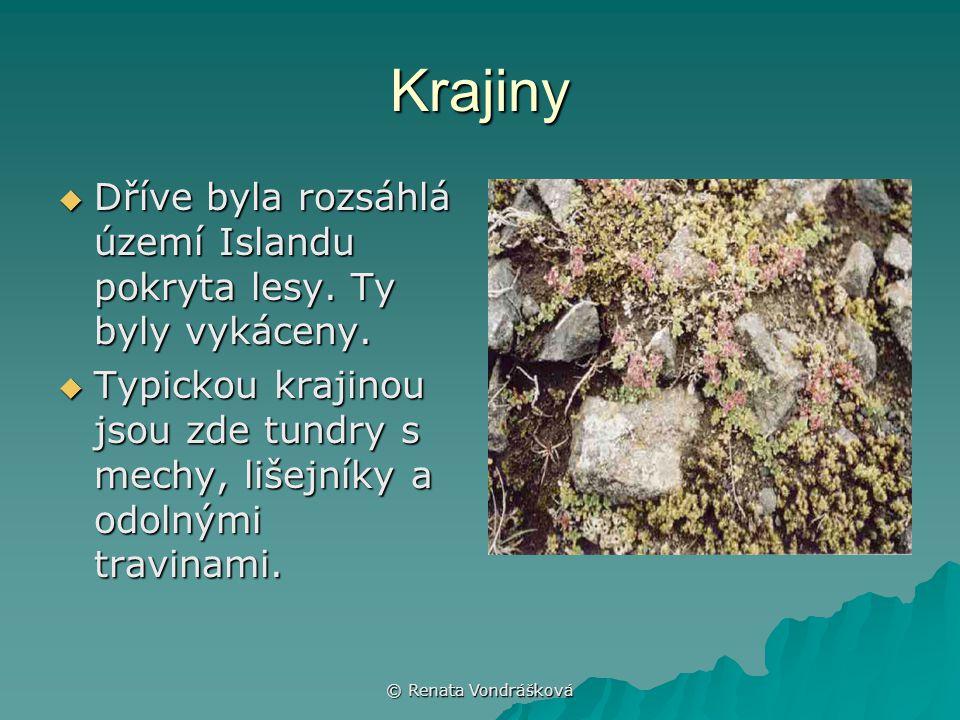 Krajiny Dříve byla rozsáhlá území Islandu pokryta lesy. Ty byly vykáceny. Typickou krajinou jsou zde tundry s mechy, lišejníky a odolnými travinami.