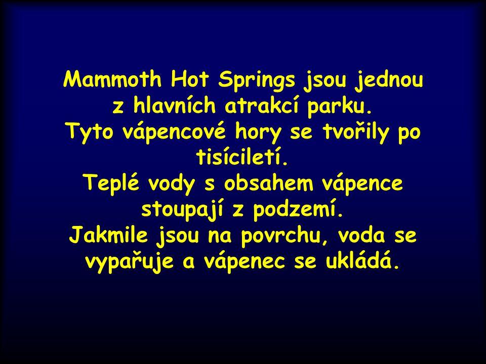 Mammoth Hot Springs jsou jednou z hlavních atrakcí parku