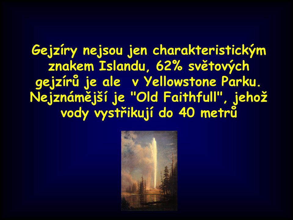 Gejzíry nejsou jen charakteristickým znakem Islandu, 62% světových gejzírů je ale v Yellowstone Parku.