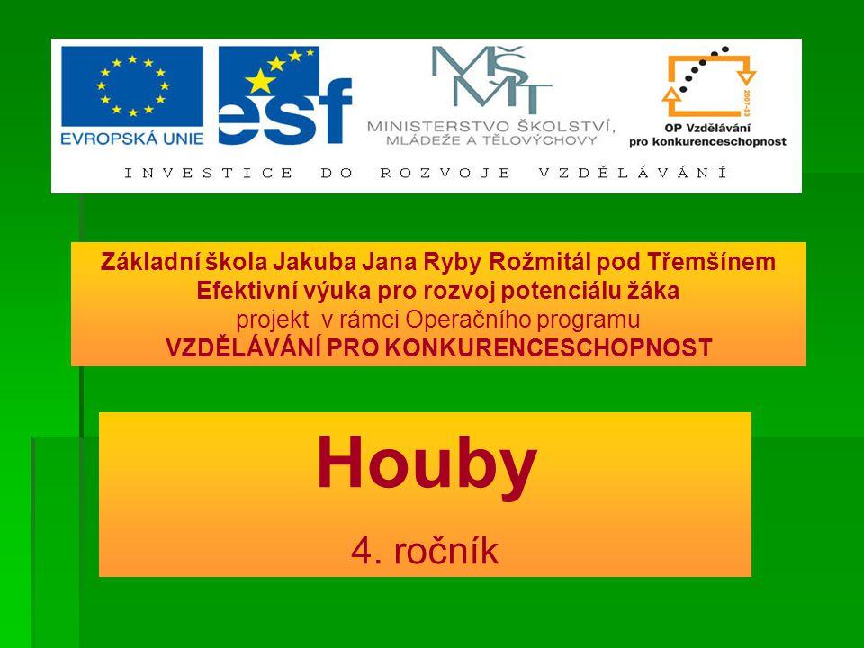 Houby 4. ročník Základní škola Jakuba Jana Ryby Rožmitál pod Třemšínem