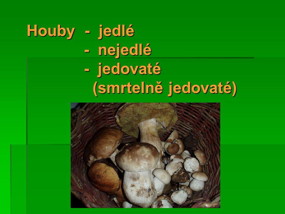 Houby - jedlé - nejedlé - jedovaté (smrtelně jedovaté)