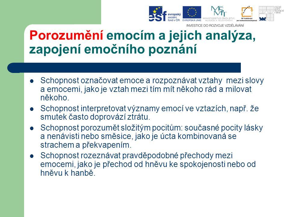 Porozumění emocím a jejich analýza, zapojení emočního poznání