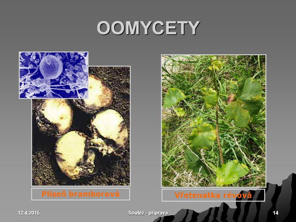 OOMYCETY Plíseň bramborová Vřetenatka révová 10.4.2017