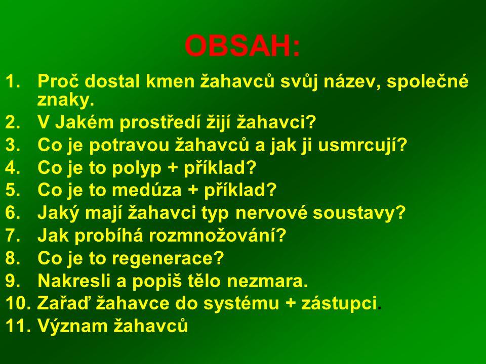 OBSAH: Proč dostal kmen žahavců svůj název, společné znaky.