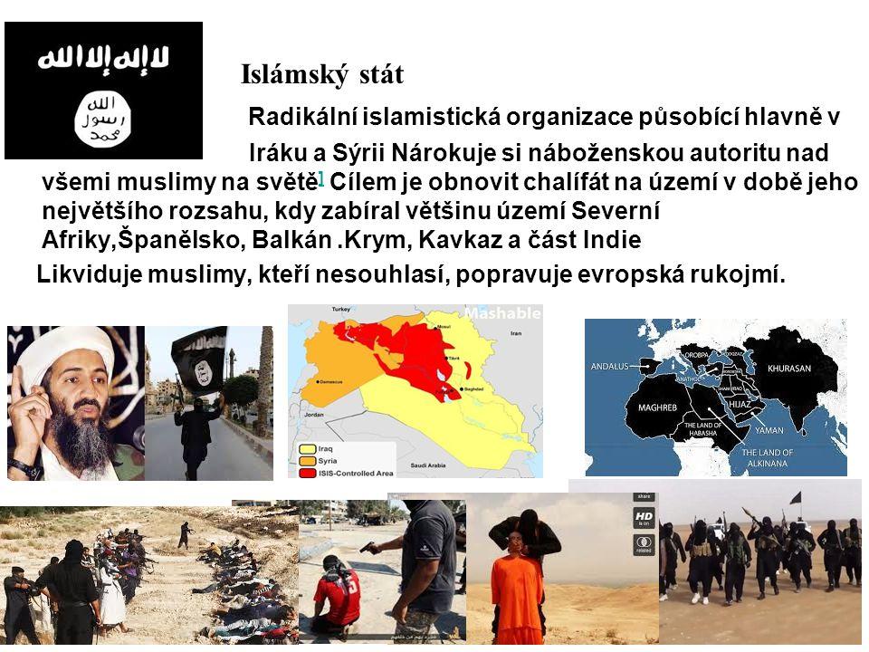 Radikální islamistická organizace působící hlavně v