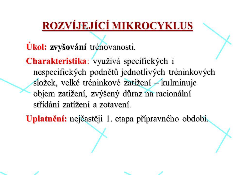ROZVÍJEJÍCÍ MIKROCYKLUS