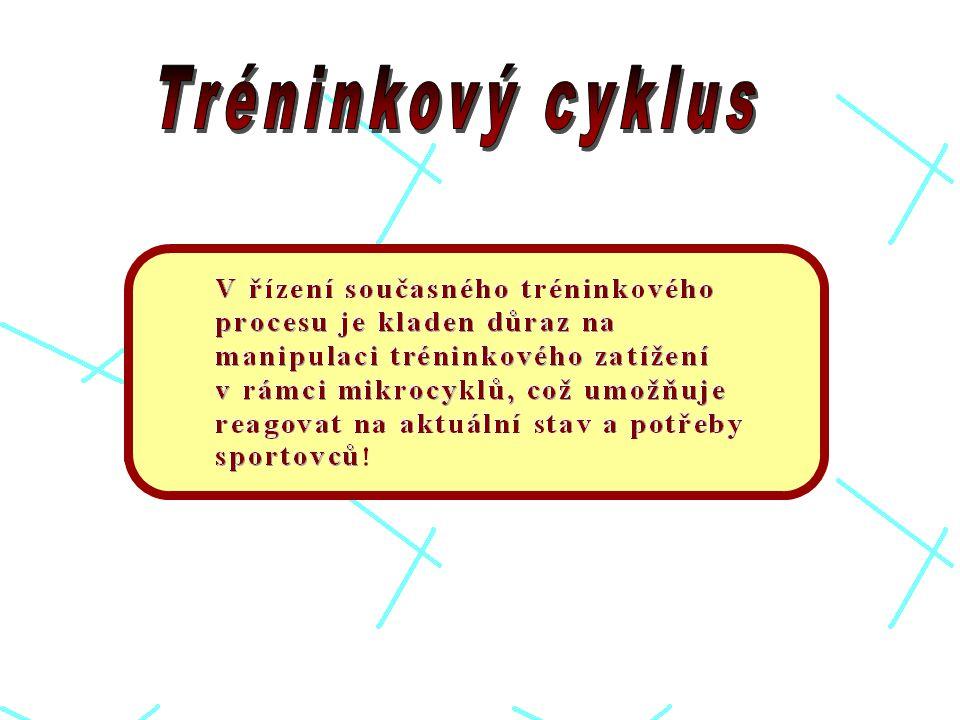 Tréninkový cyklus