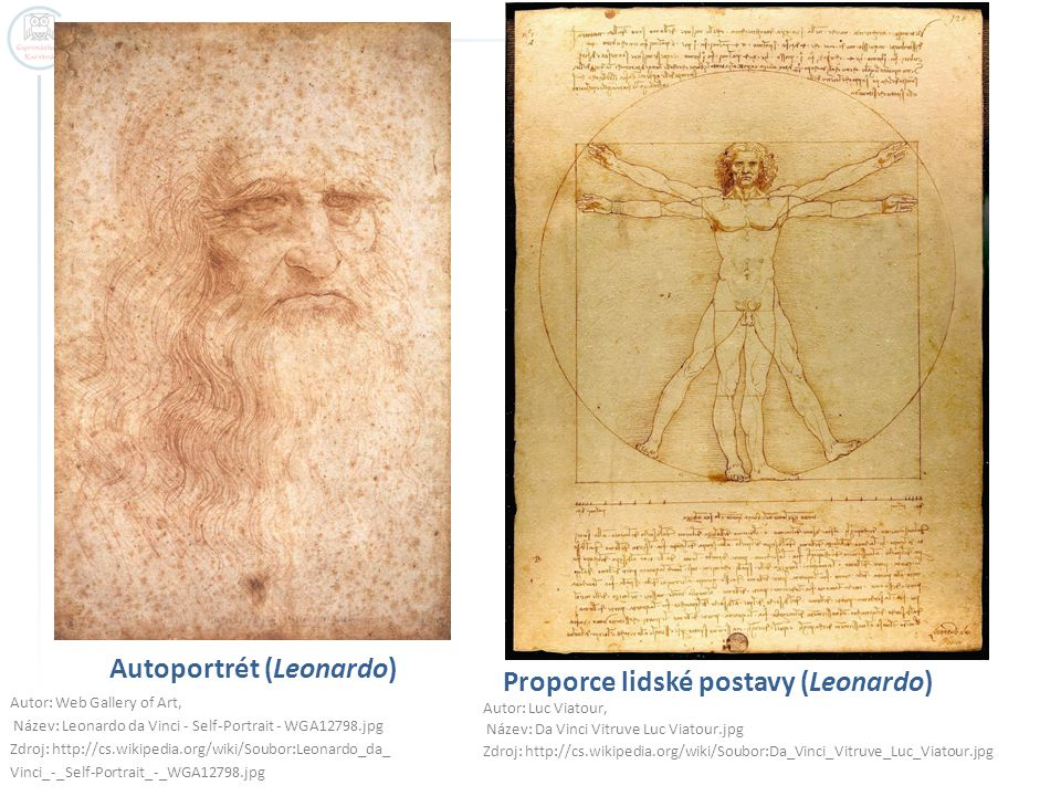 Autoportrét (Leonardo)