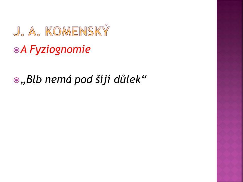 """J. A. Komenský A Fyziognomie """"Blb nemá pod šíjí důlek"""