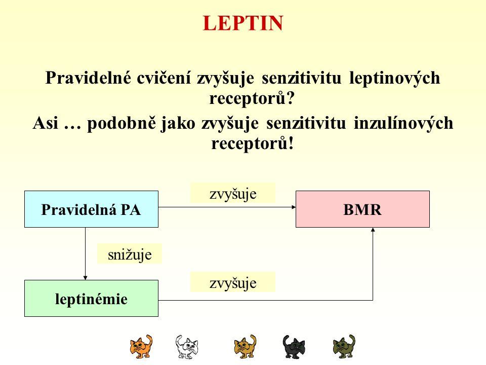 LEPTIN Pravidelné cvičení zvyšuje senzitivitu leptinových receptorů