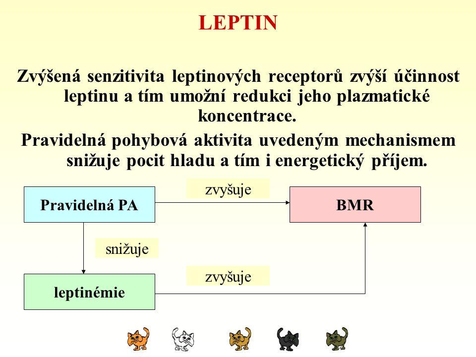 LEPTIN Zvýšená senzitivita leptinových receptorů zvýší účinnost leptinu a tím umožní redukci jeho plazmatické koncentrace.