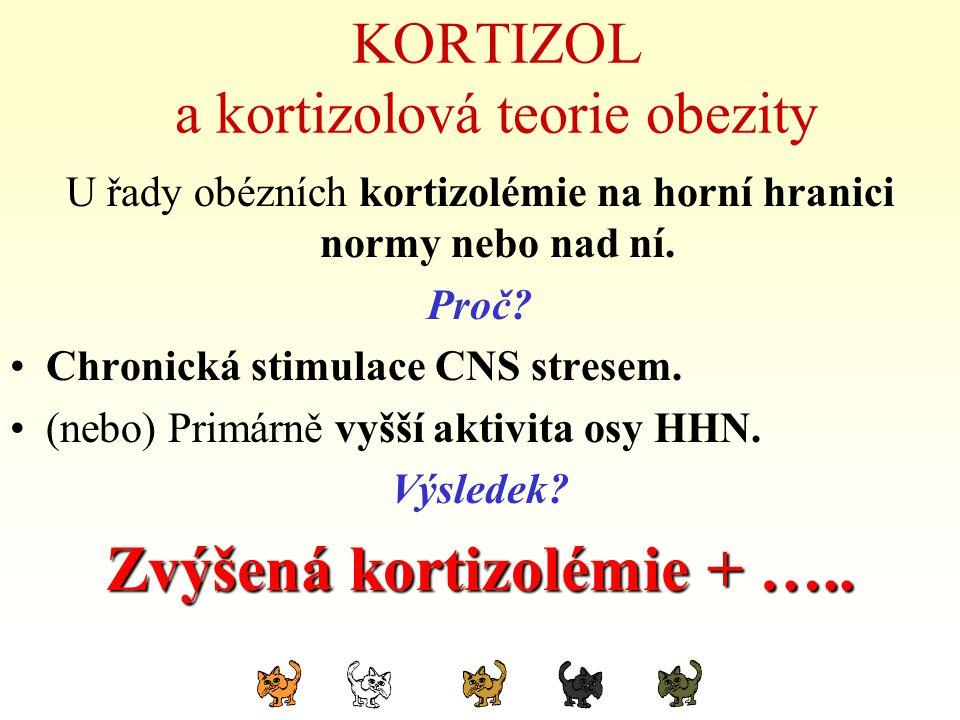 KORTIZOL a kortizolová teorie obezity