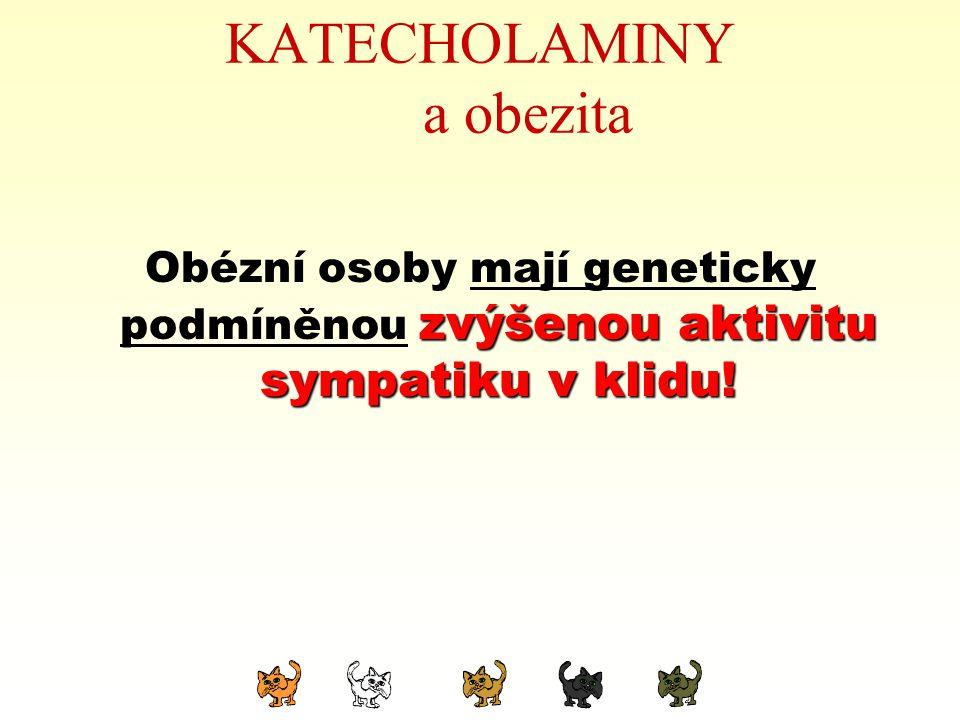 KATECHOLAMINY a obezita