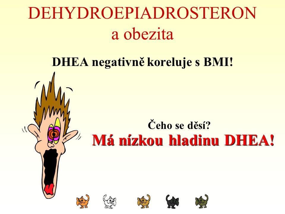 DEHYDROEPIADROSTERON a obezita