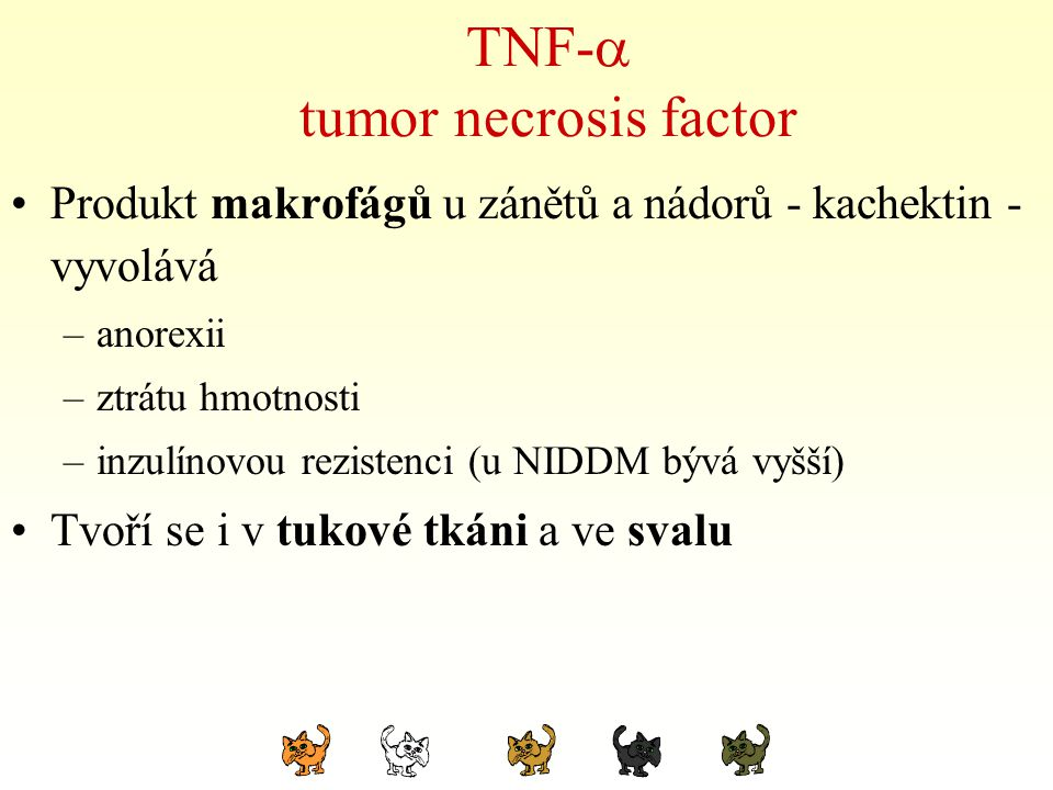 TNF- tumor necrosis factor