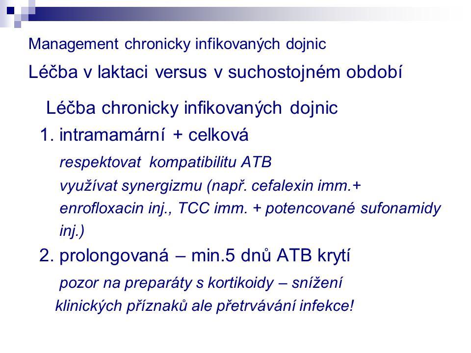 Léčba chronicky infikovaných dojnic