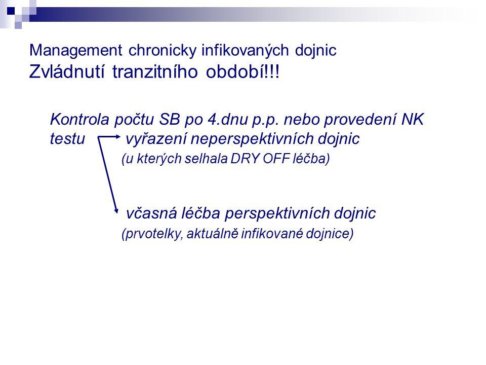 Management chronicky infikovaných dojnic Zvládnutí tranzitního období!!!