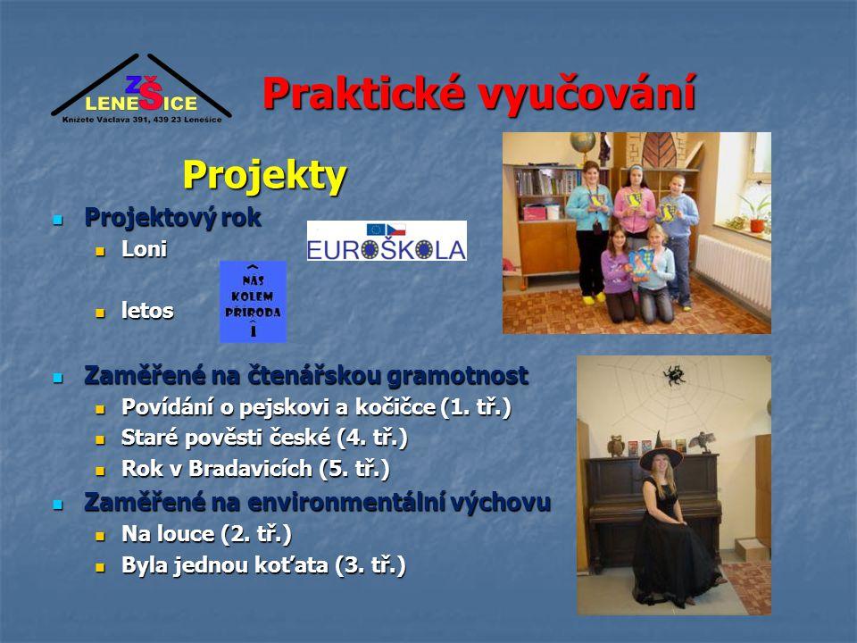 Praktické vyučování Projekty Projektový rok
