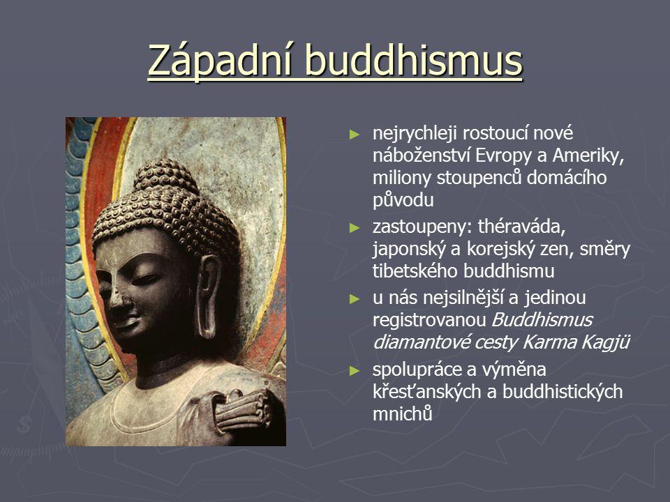 Západní buddhismus nejrychleji rostoucí nové náboženství Evropy a Ameriky, miliony stoupenců domácího původu.