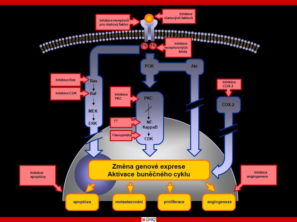 Aktivace buněčného cyklu