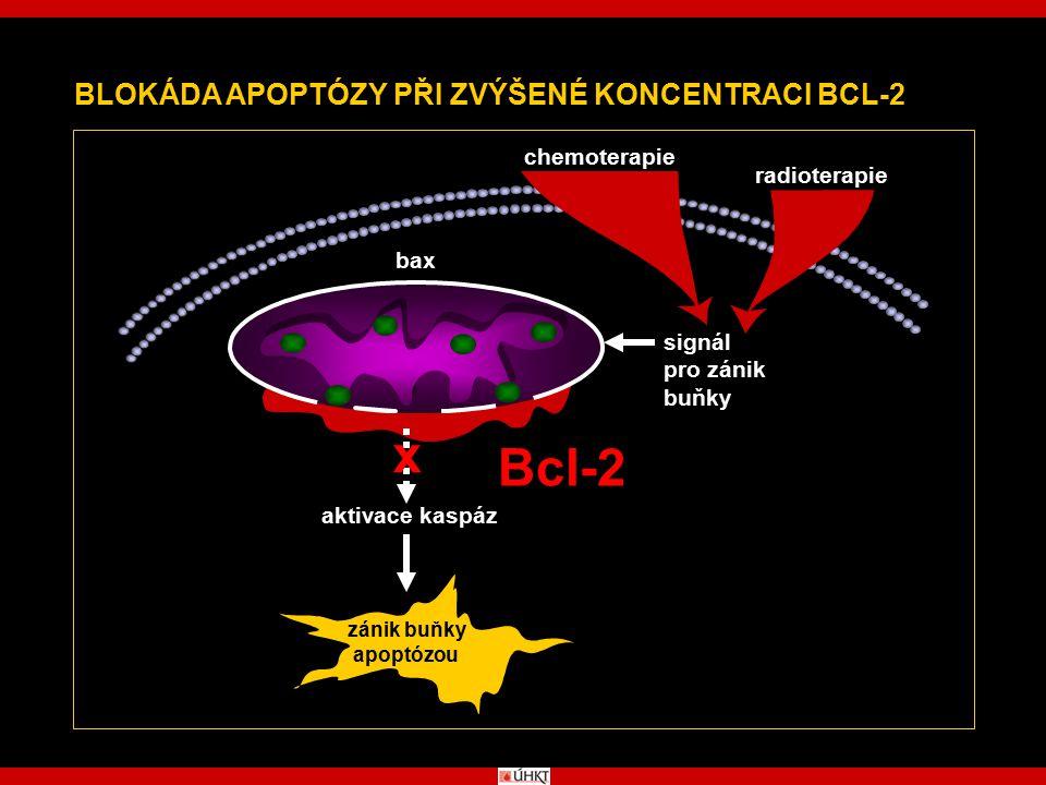 x Bcl-2 BLOKÁDA APOPTÓZY PŘI ZVÝŠENÉ KONCENTRACI BCL-2 chemoterapie