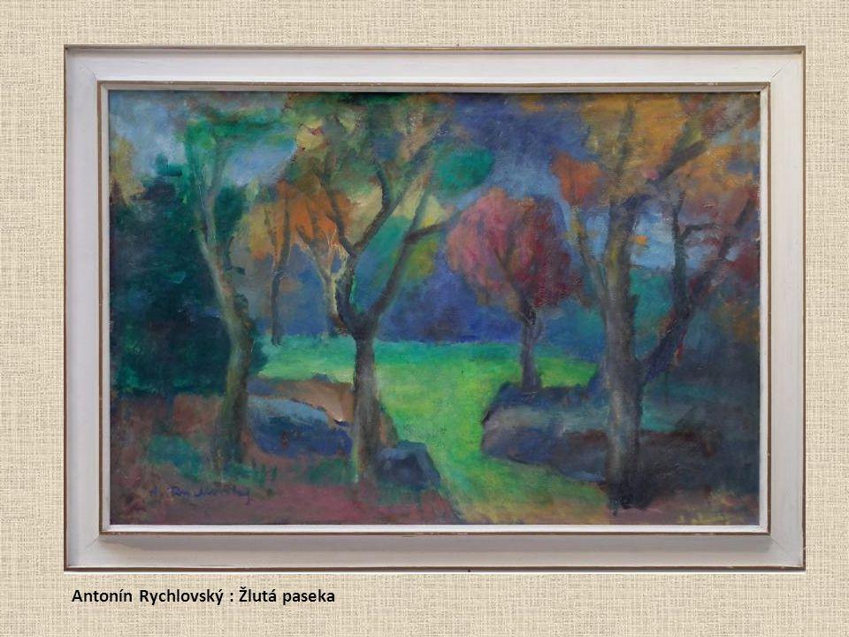Antonín Rychlovský : Žlutá paseka