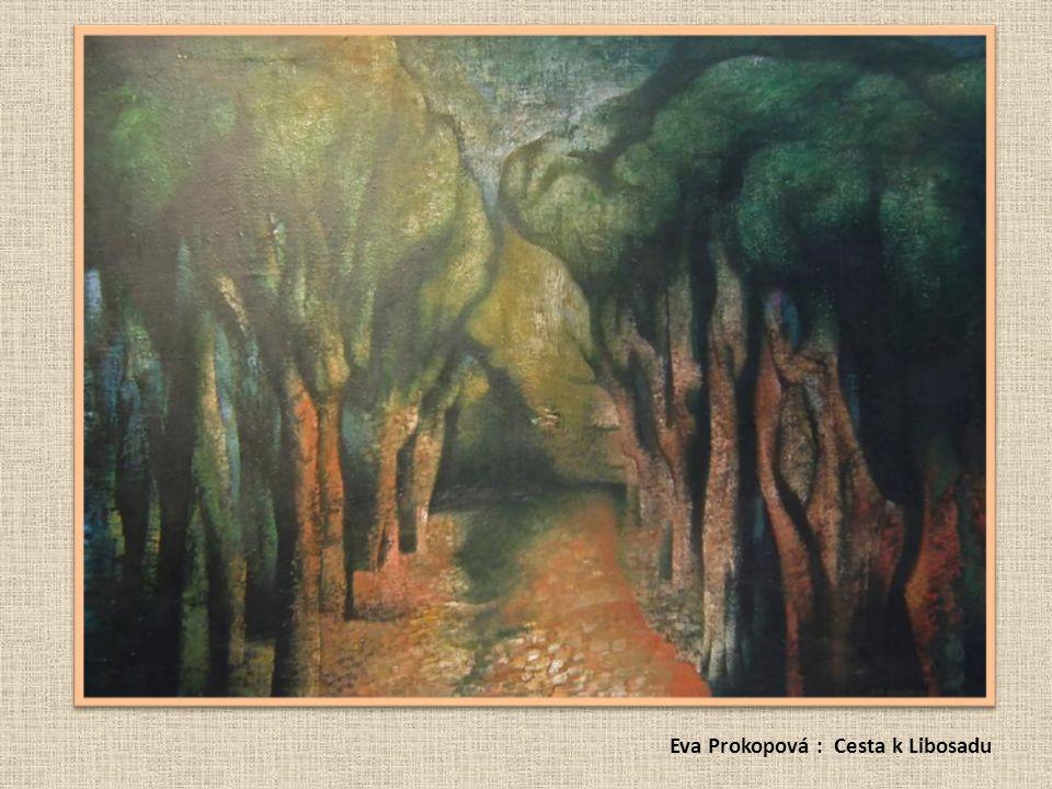 Eva Prokopová : Cesta k Libosadu