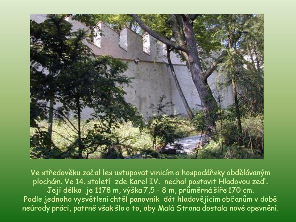 Její délka je 1178 m, výška 7,5 - 8 m, průměrná šíře 170 cm.