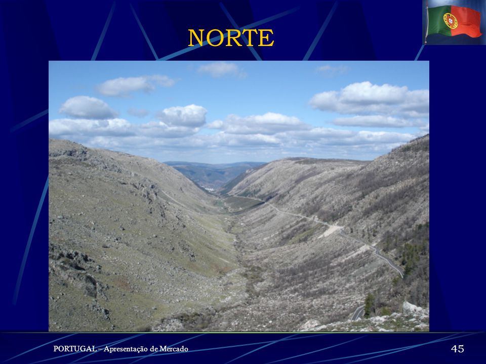 NORTE PORTUGAL – Apresentação de Mercado 45