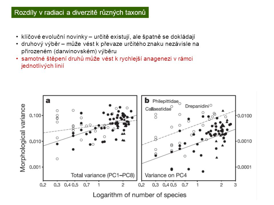 Rozdíly v radiaci a diverzitě různých taxonů