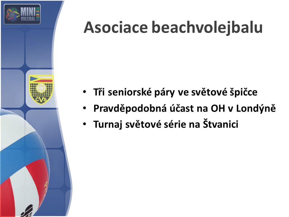 Asociace beachvolejbalu