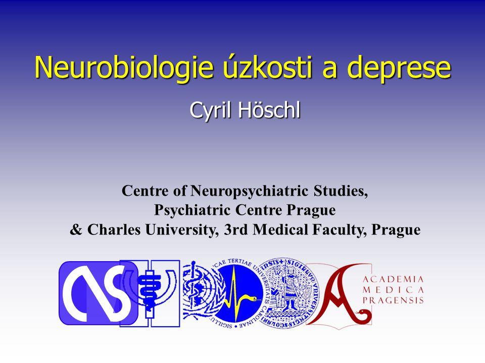 Neurobiologie úzkosti a deprese