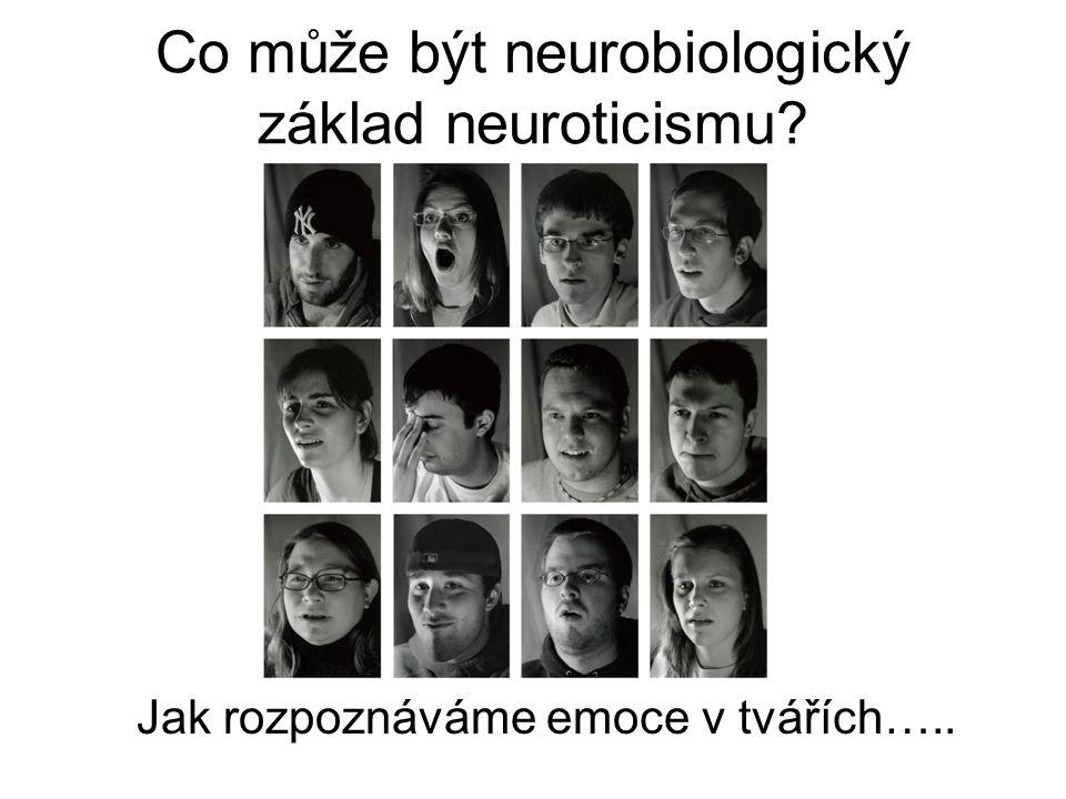 Co může být neurobiologický základ neuroticismu