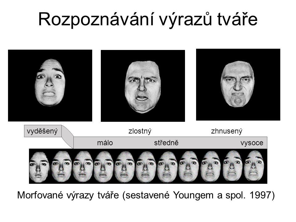 Rozpoznávání výrazů tváře