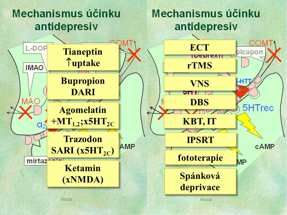 ECT Tianeptin uptake rTMS Bupropion DARI VNS DBS