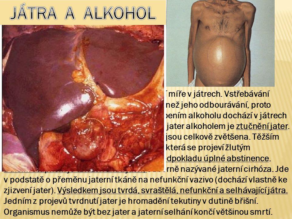 JÁTRA JÁTRA A ALKOHOL.