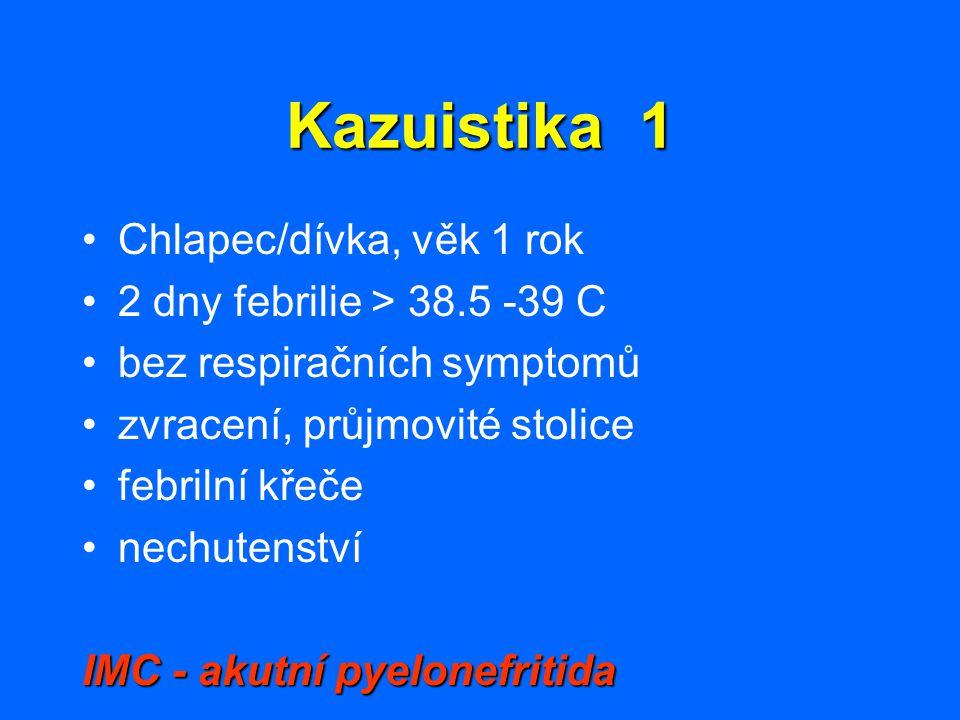 Kazuistika 1 Chlapec/dívka, věk 1 rok 2 dny febrilie > 38.5 -39 C