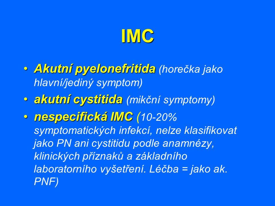 IMC Akutní pyelonefritida (horečka jako hlavní/jediný symptom)