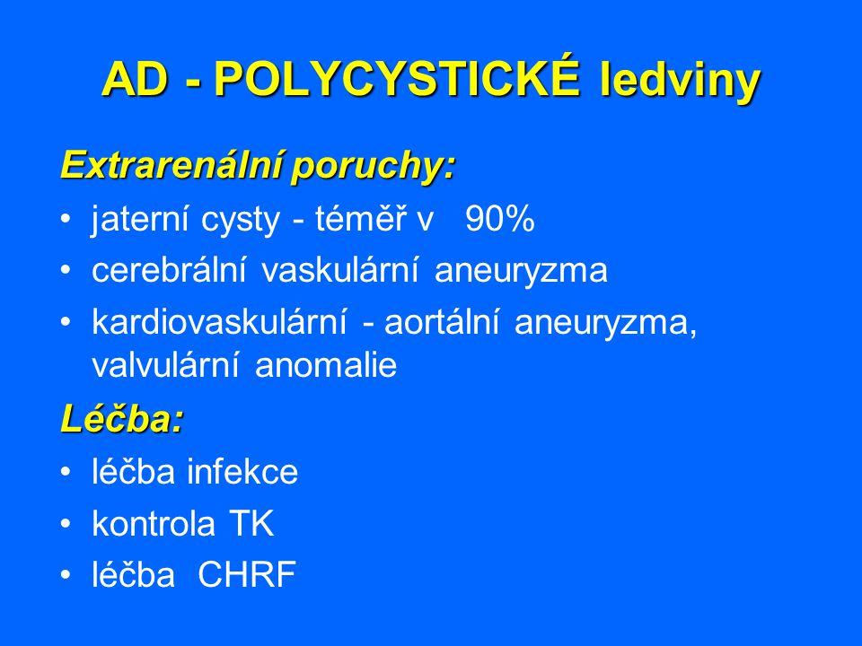 AD - POLYCYSTICKÉ ledviny