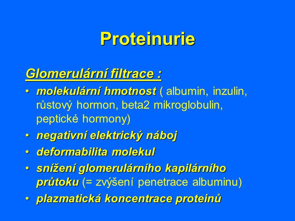 Proteinurie Glomerulární filtrace :