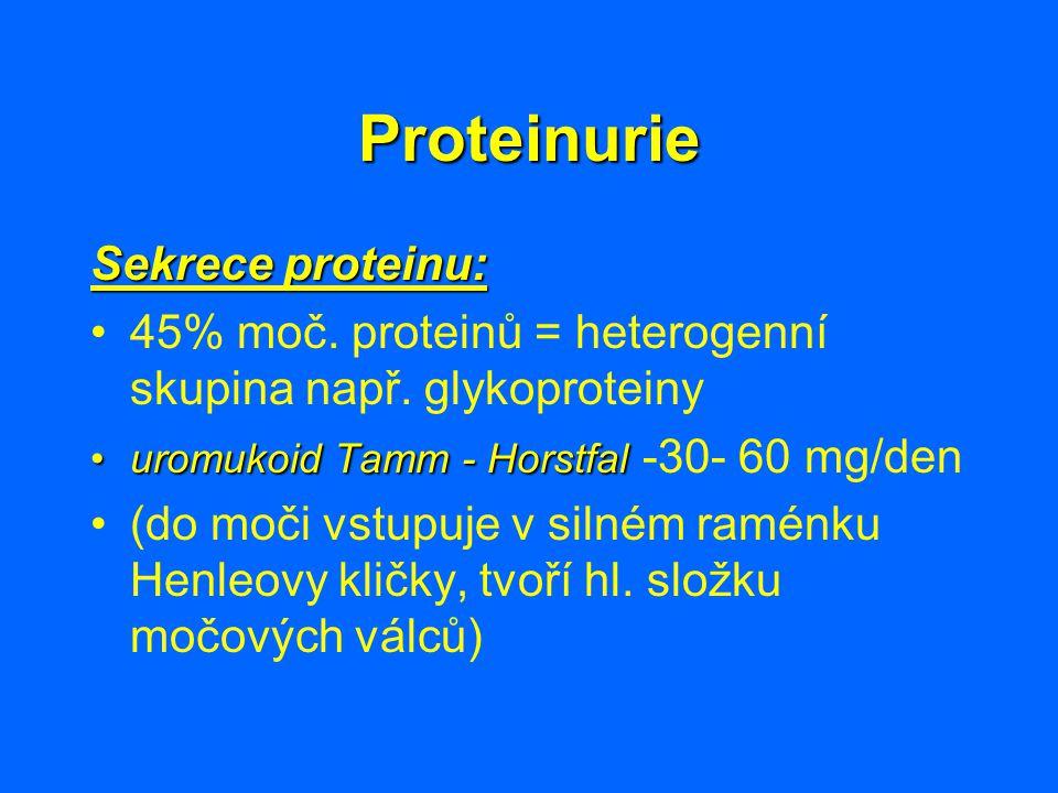 Proteinurie Sekrece proteinu: