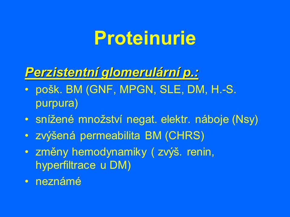 Proteinurie Perzistentní glomerulární p.: